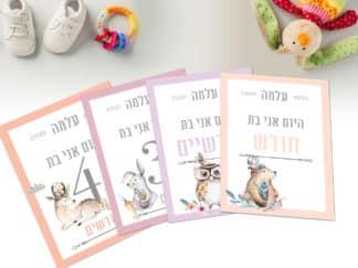 גלויות חודשים לתיעוד השנה הראשונה של התינוק