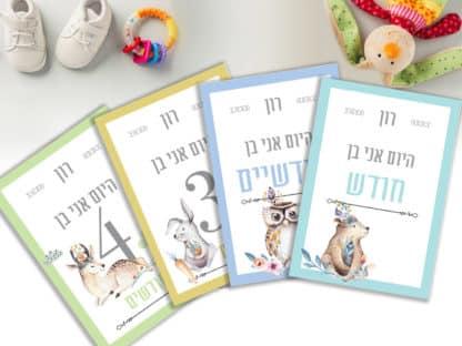 גלויות חודשים לתיעוד השנה הראשונה של התינוק. דגם בנים